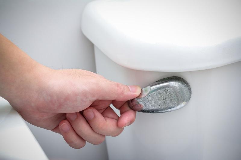 Check Your Toilet's Flush - Putman & Sons Plumbing